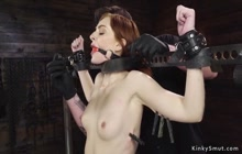 Bound slave is gagged with big dick